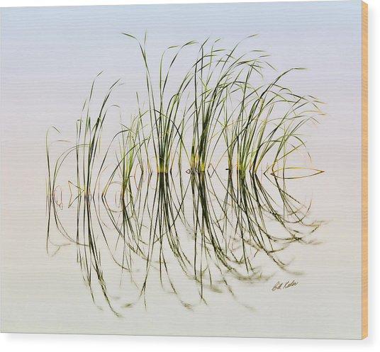 Graceful Grass Wood Print