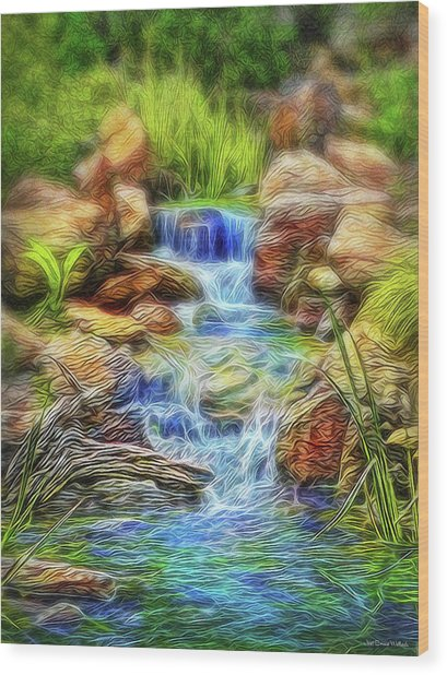 Graceful Waters Wood Print