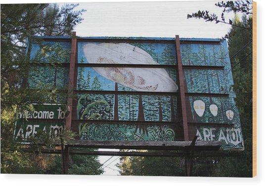 Graffiti 5 Wood Print by Holly Ethan