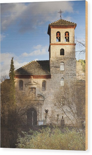 Granada Wood Print by Andre Vicente Goncalves