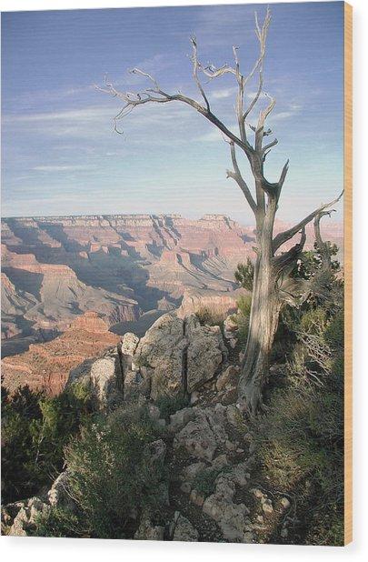 Grand Canyon 5 Wood Print