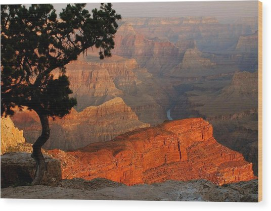 Grand Canyon At Sunrise Wood Print by Stephen  Vecchiotti