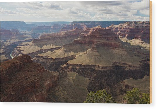 Wood Print featuring the photograph Grand Canyon by Jennifer Ancker