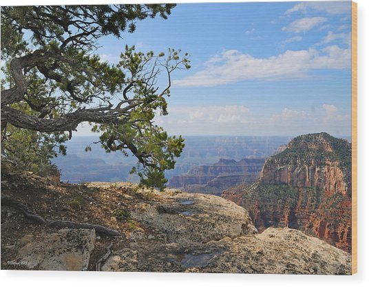 Grand Canyon North Rim Craggy Cliffs Wood Print