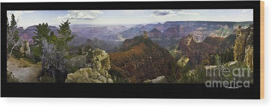 Grand Canyon Pan  Wood Print by Jonathan Fine