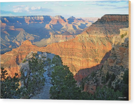 Grand Canyon South Rim At Sunset Wood Print
