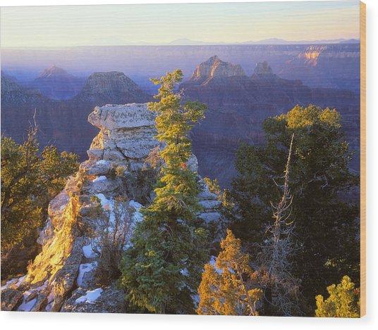 Grand Canyon Sunrise Wood Print by Johan Elzenga