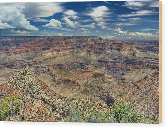 Grand Canyon View Wood Print by John Kelly