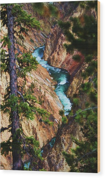 Grand Canyon  Yellowstone Wood Print by Russell  Barton