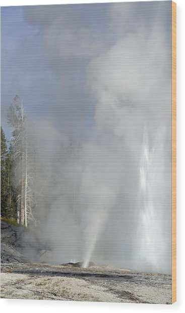 Grand Geyser Vertical Wood Print