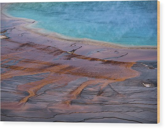 Wood Print featuring the photograph Grand Prismatic Spring Detail by Jennifer Ancker