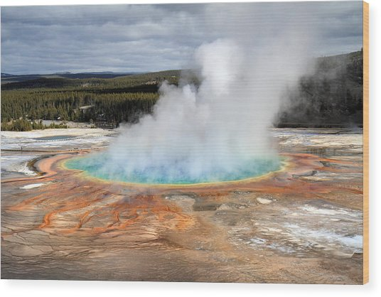 Grand Prismatic Springs In Yellowstone National Park Wood Print