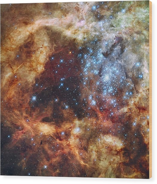 Grand Star Forming - A  Stellar Nursery Wood Print