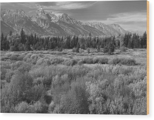 Grand Teton Afternoon Wood Print