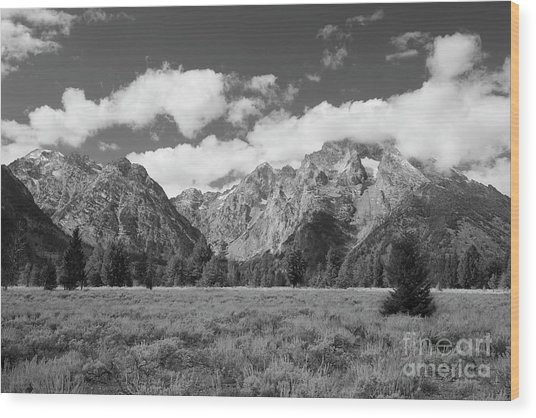 Grand Tetons In Black And White Wood Print
