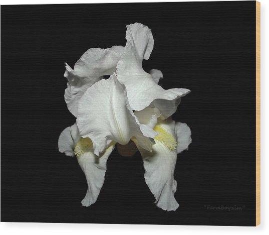 Grandma's White Iris Wood Print