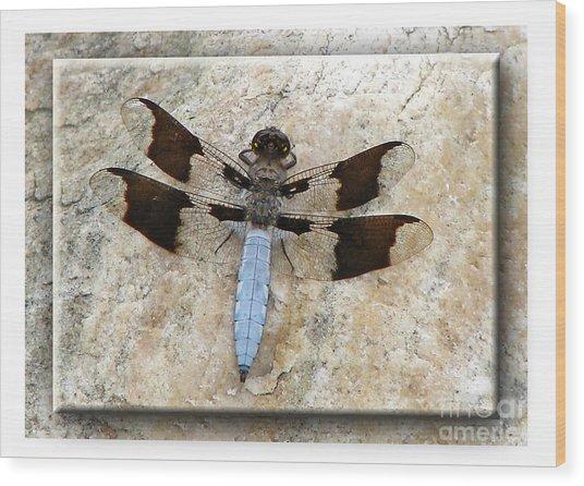 Granite Dragon Wood Print