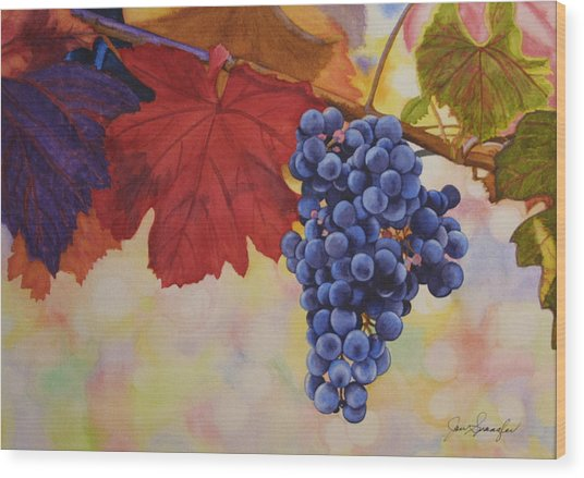 Grape Harvest Wood Print by Jan  Spangler