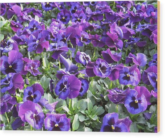 Grape Jelly Wood Print