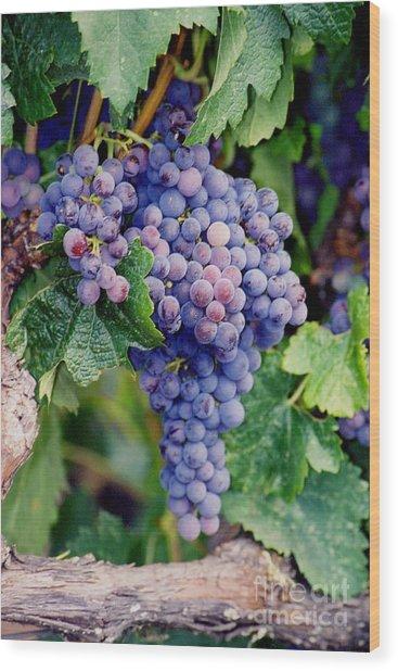 Grapes Wood Print by Sandy Adams