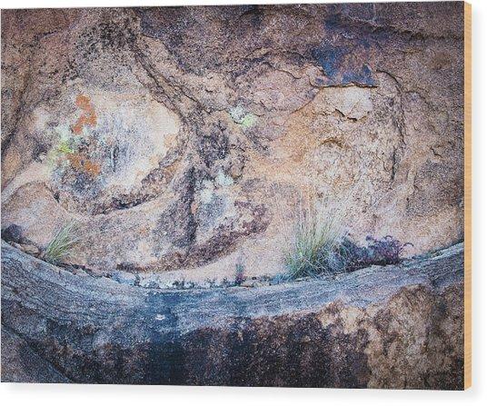 Grapevine Hills No. 7 Wood Print by Al White