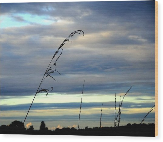 Grass Against Abstract Sky Wood Print