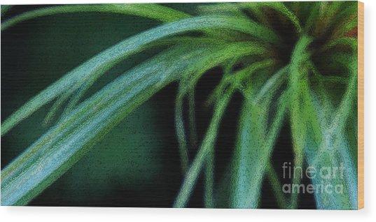 Grass Dance Wood Print