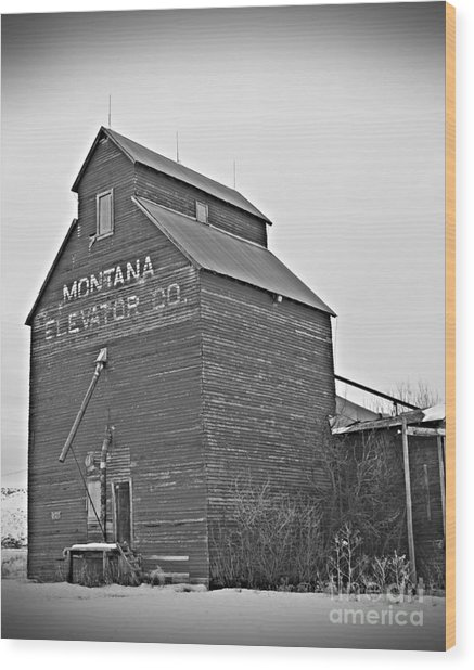 Grass Range Granary Bw Wood Print