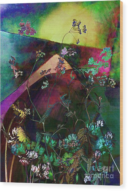 Grassland Series No. 6 Wood Print by Vinson Krehbiel