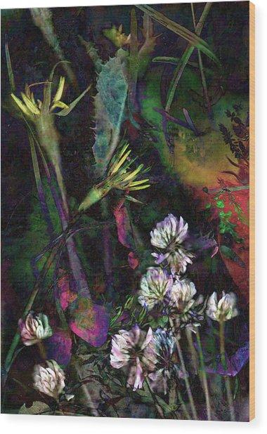 Grasslands Series No. 7 Wood Print by Vinson Krehbiel