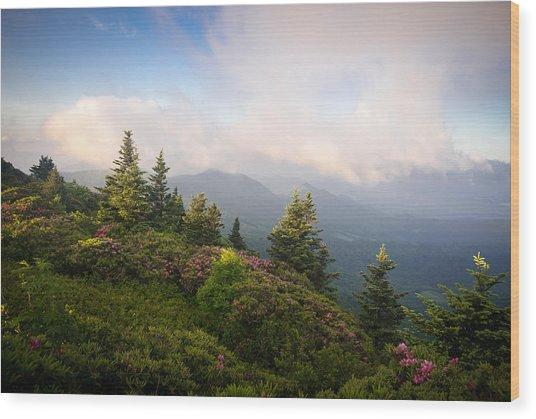 Grassy Ridge Rhododendron Bloom Wood Print