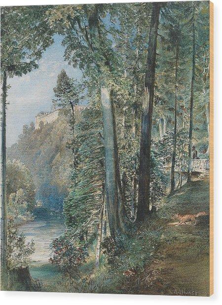 Gratz Castle Wood Print