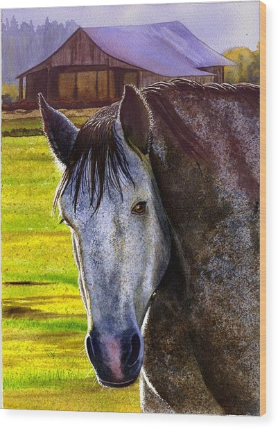 Gray Horse Wood Print by Catherine G McElroy
