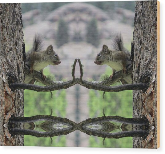 Gray Squirrel Soul Mates Wood Print