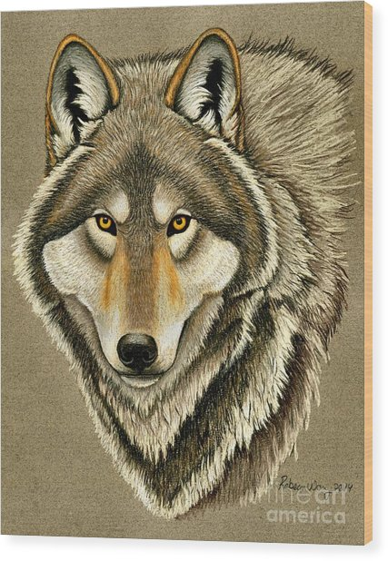 Gray Wolf Portrait Wood Print