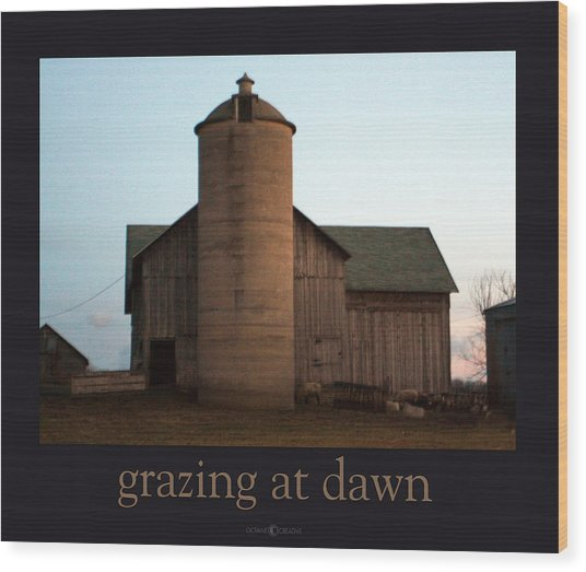 Grazing At Dawn Wood Print