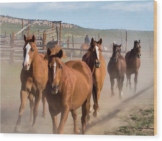 Great American Horse Drive - Coming Into The Corrals Wood Print