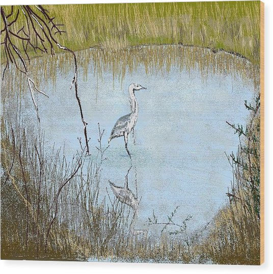 Great Blue Wood Print by Carole Boyd