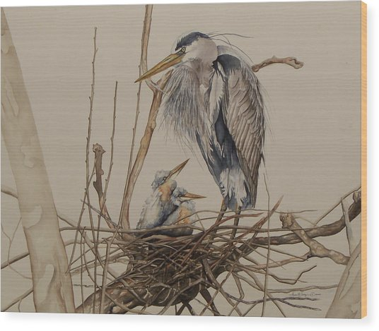 Great Blue Heron And Chicks Wood Print