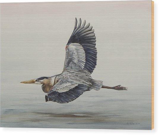 Great Blue Heron Flying Wood Print