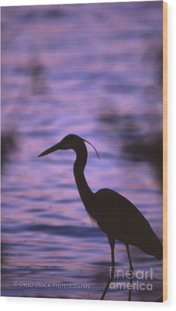 Great Blue Heron Photo Wood Print