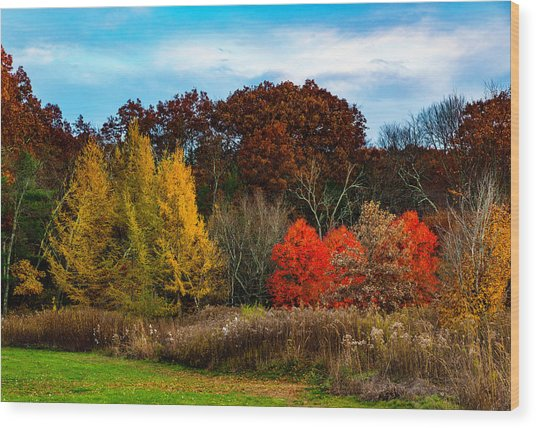 Great Brook Farm Autumn Wood Print