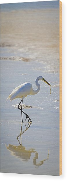 Great Egret With Prey Wood Print