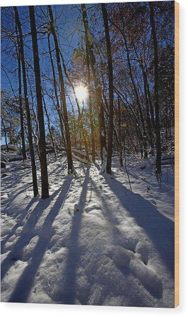Great Falls Park Virginia After A Winter Blast Wood Print by Brendan Reals