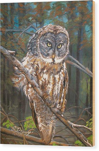 Great Grey Owl 2 Wood Print