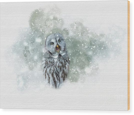 Great Grey Owl In Snowstorm Wood Print