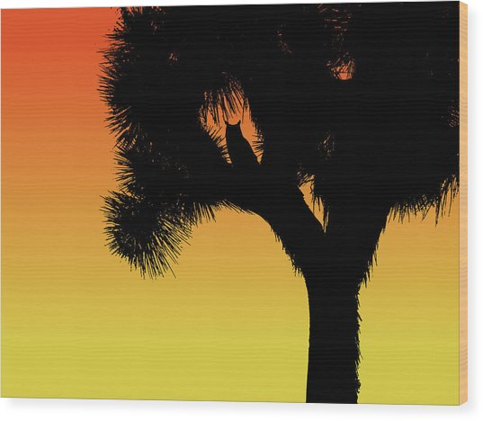 Great Horned Owl In A Joshua Tree Silhouette At Sunset Wood Print