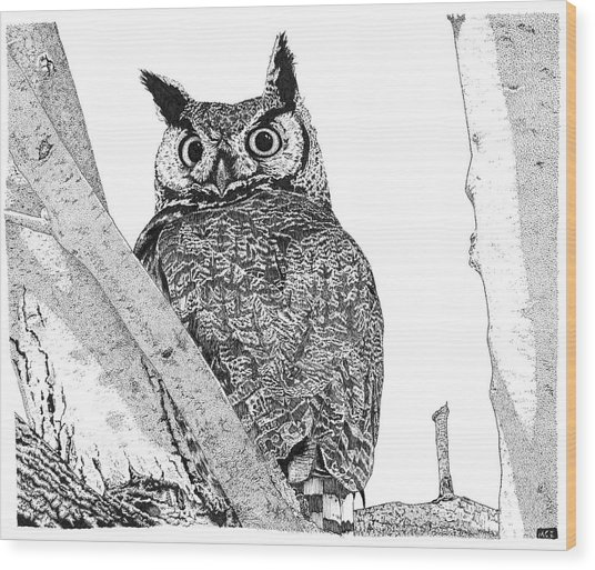 Great Horned Owl In A Tamarisk Wood Print