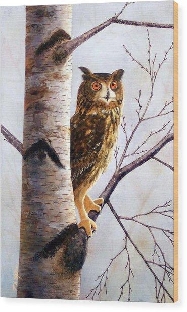 Great Horned Owl In Birch Wood Print