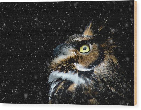 Great Horned Owl In The Snow Wood Print